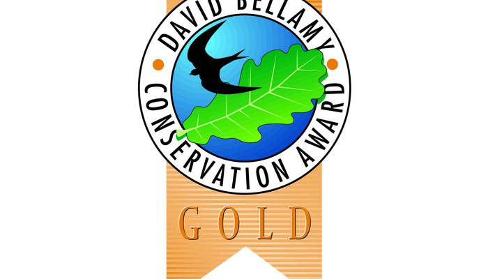 David Bellamy Gold Award